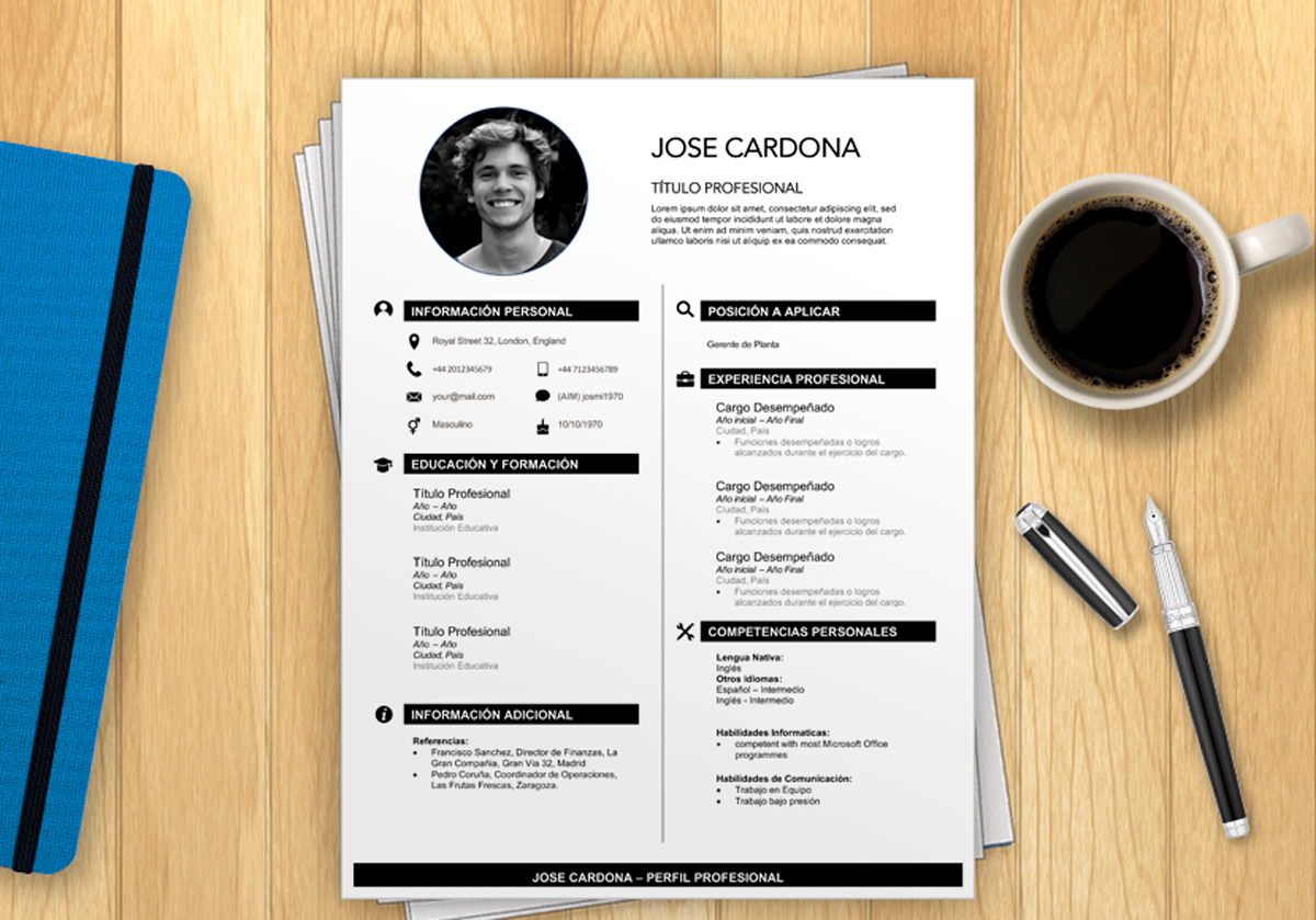 CV para espana plantilla curriculum